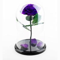 Роза в колбе фиолетовая Премиум / Premium (Большая 28 см)
