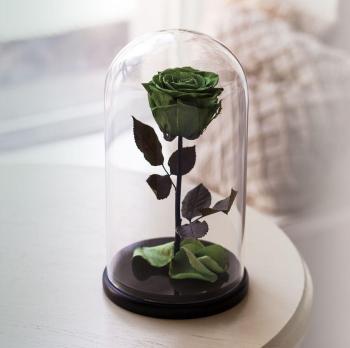 Роза в колбе зеленая Премиум / Premium (Большая 28 см)