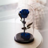 Роза в колбе синяя Премиум / Premium (Большая 28 см)_0