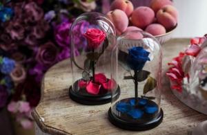 Роза в колбе синяя Премиум / Premium (Большая 28 см)