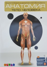 Энциклопедия 4D в дополненной реальности «Анатомия: тело человека»